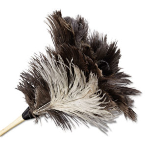 Boardwalk® Professional Ostrich Feather Duster