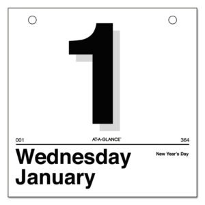 """AT-A-GLANCE® """"Today Is"""" Daily Wall Calendar Refill"""
