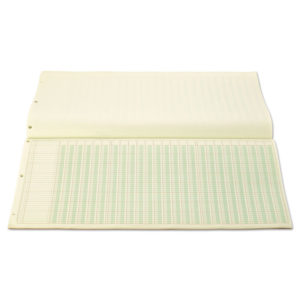 Wilson Jones® Column Write® Side Bound Columnar Pad