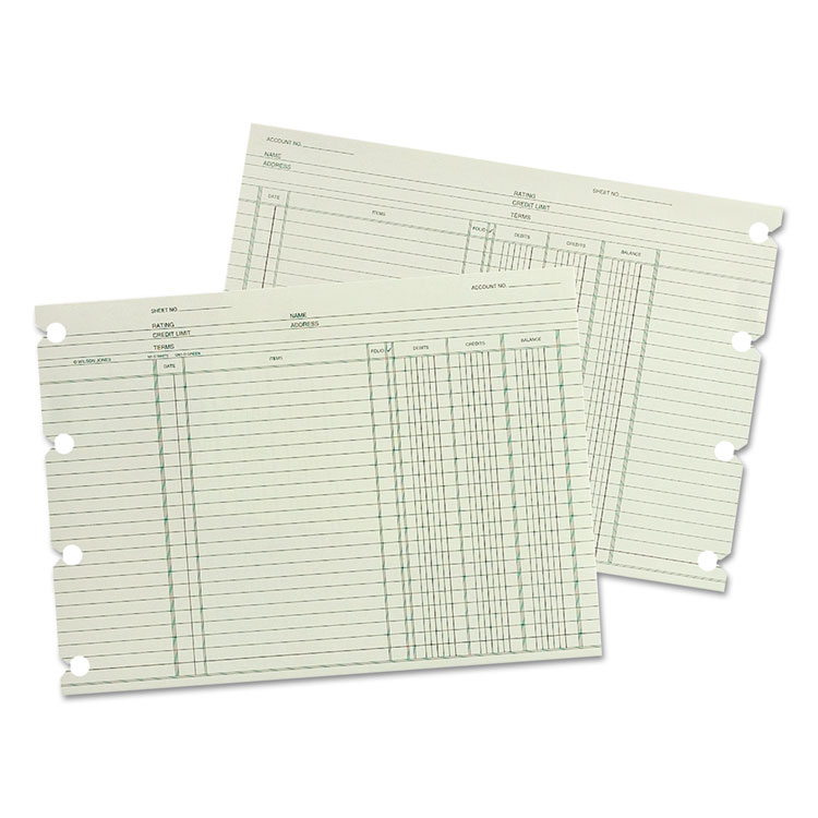 Wilson Jones® Double Entry Ledger Form