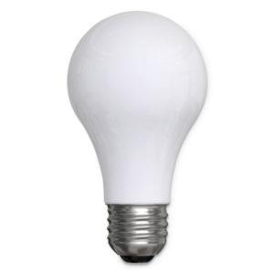 GE Reveal® A19 Light Bulb