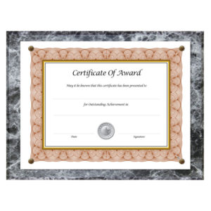 NuDell™ Award-A-Plaque